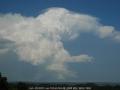 20061115mb20_pileus_cap_cloud_alstonville_nsw