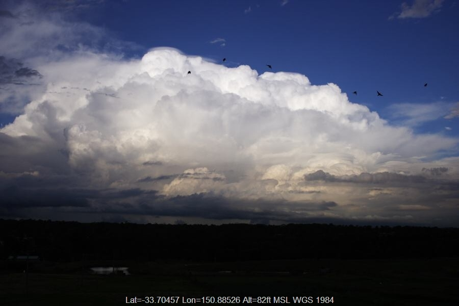 Gallery: Pileus Cap Clouds