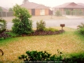 19940201mb13_precipitation_rain_oakhurst_nsw