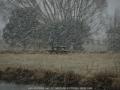 20090715mb08_precipitation_rain_guyra_nsw