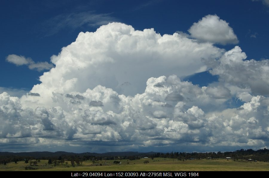20090124mb21_congestus_tenterfield_nsw