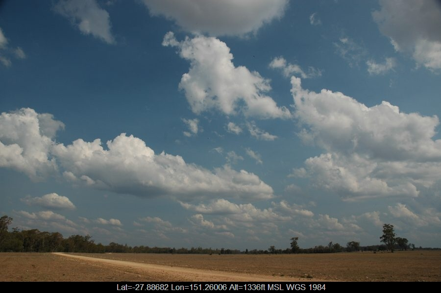 20070114mb05_humilis_sw_of_milmerran_qld