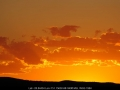 20061216mb15_humilis_near_texas_qld