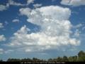 20081219mb05_humilis_mcleans_ridges_nsw