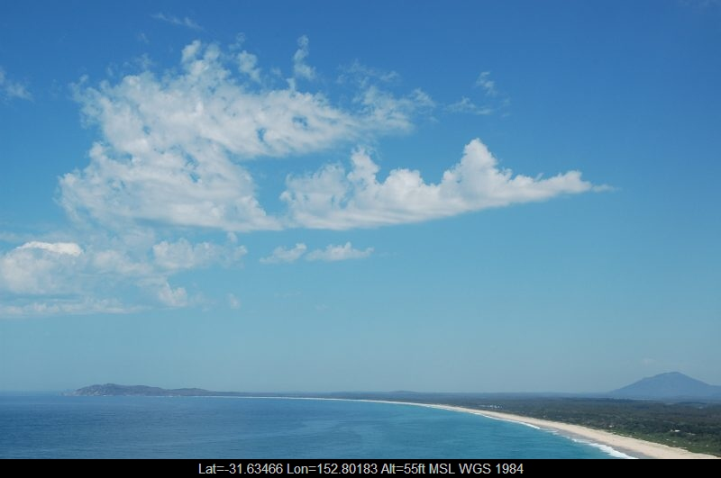 20050924mb02_castellanus_laurieton_nsw