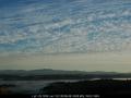 20060508mb01_undulatus_mcleans_ridges_nsw