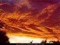 19941028mb01_altostratus_cloud_oakhurst_nsw