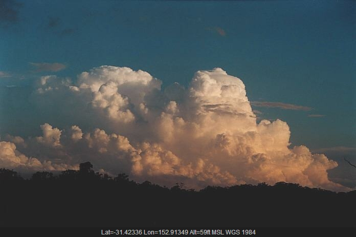 20001105jd55_cumulonimbus_calvus_s_of_port_macquarie_nsw