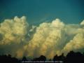 20000823mb12_cumulonimbus_calvus_mcleans_ridges_nsw