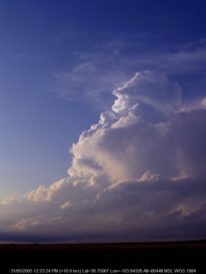 20050530jd17_cumulonimbus_incus_se_of_des_moines_new_mexico_usa