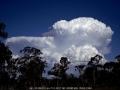 20051120jd11_cumulonimbus_incus_walcha_nsw