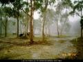 19931025jd07_hail_stones_wyee_nsw