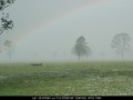 20041109mb50_hail_stones_leeville_nsw