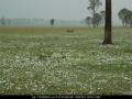20041109mb52_hail_stones_leeville_nsw
