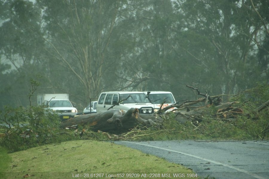 20081224mb35_storm_damage_n_of_kyogle_nsw