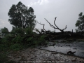 20060124jd12_storm_damage_near_mudgee_nsw