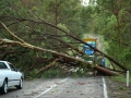 20070126mb54_storm_damage_jackadgery_nsw