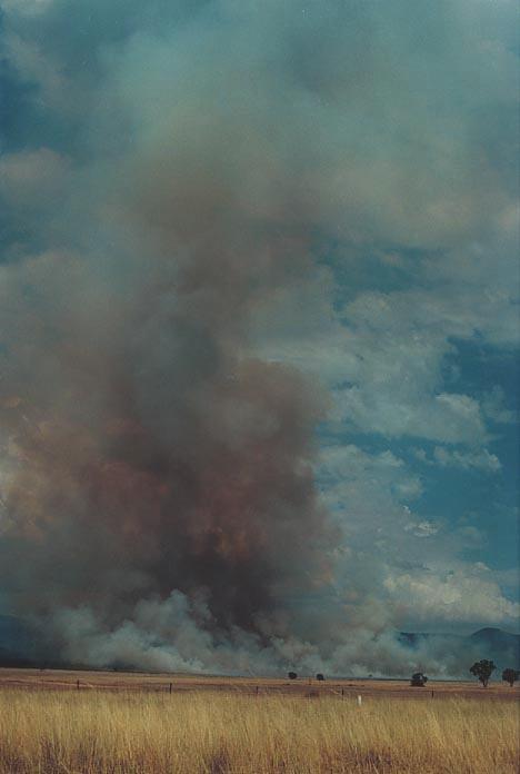 20010116jd01_wild_fire_narrabri_nsw