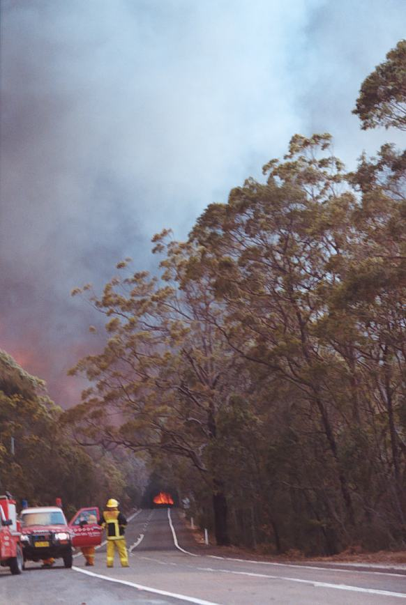 20021204jd12_wild_fire_glenorie_nsw