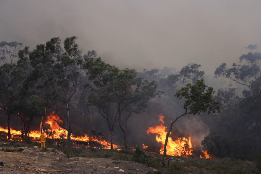 20060924jd35_wild_fire_pacific_park_nsw