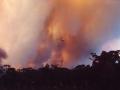 20021204jd01_wild_fire_glenorie_nsw