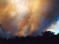 20021204jd02_wild_fire_glenorie_nsw