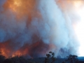 20021204jd06_wild_fire_glenorie_nsw