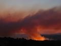20060822mb04_wild_fire_mcleans_ridges_nsw