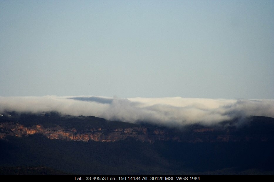 20060203jd01_fog_mist_frost_n_of_lithgow_nsw