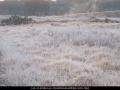 20020712jd11_fog_mist_frost_schofields_nsw