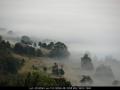 20080626mb04_fog_mist_frost_mcleans_ridges_nsw