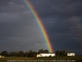 20090824jd05_rainbow_pictures_schofields_nsw