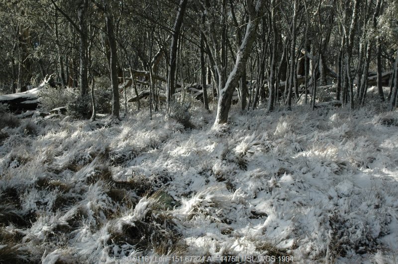 20050623mb53_snow_pictures_ben_lomond_nsw