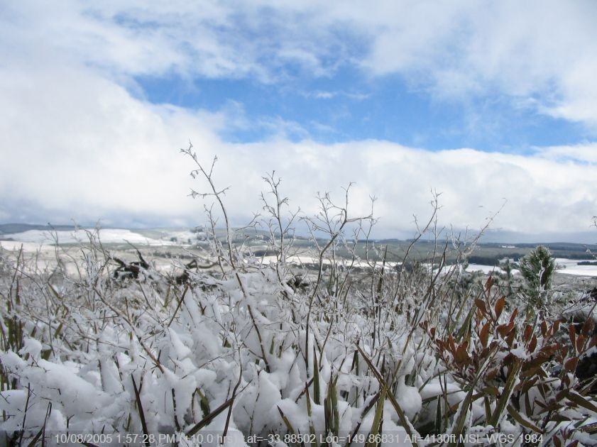 20050810jd110_snow_pictures_near_shooters_hill_nsw