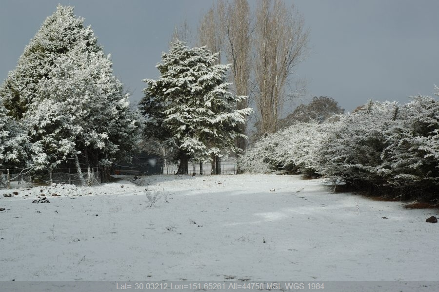 20070708mb042_snow_pictures_near_ben_lomond_nsw