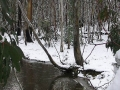 20050710jd27_snow_pictures_near_oberon_nsw