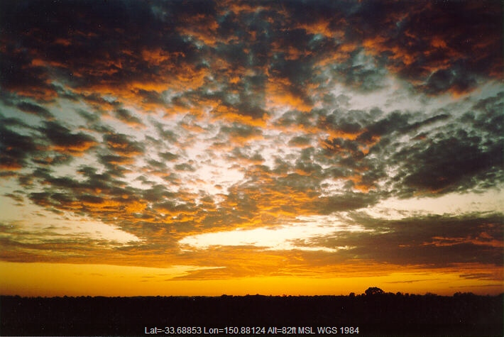 19940206jd01_sunrise_pictures_schofields_nsw