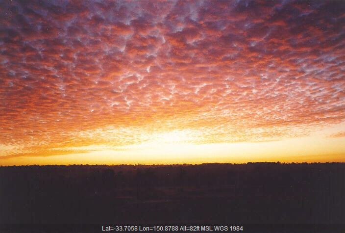 19950721jd01_sunrise_pictures_schofields_nsw