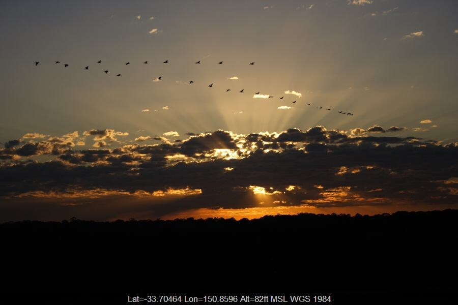 20060818jd04_sunrise_pictures_schofields_nsw