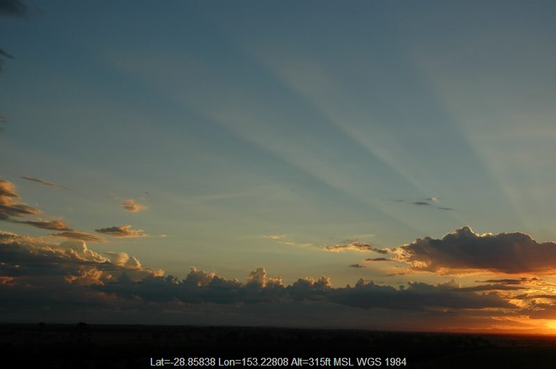 20050116mb05_sunset_pictures_parrots_nest_nsw
