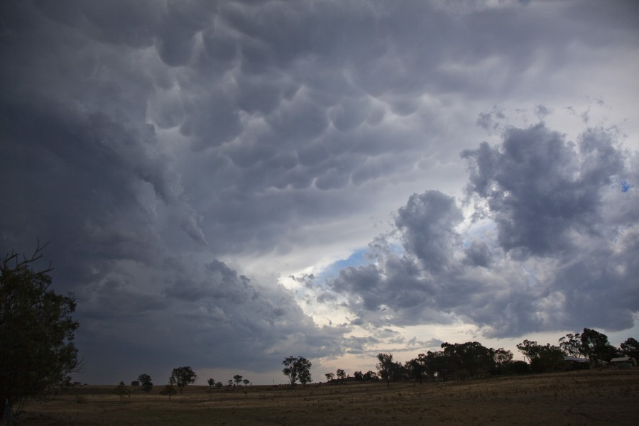 Severe Storms Mudgee region 23rd January 2013