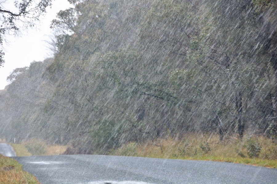 Snow NSW Northern Tablelands 25 June 2013 12