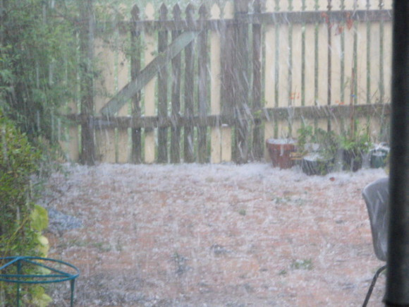 Taree Hailstorm 25/11/2013 1605hrs. This was taken by the wife where I was holding the radio mast.