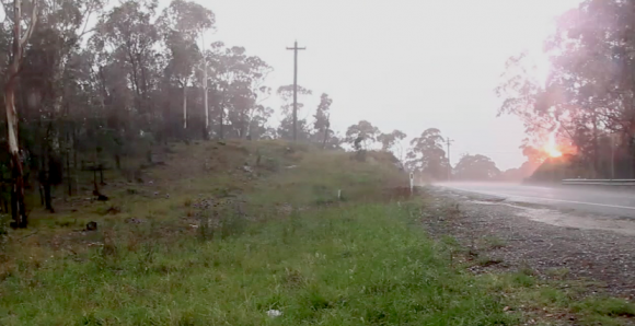 Tree-hit-by-lightning-200-metres-away-2nd-january-2015