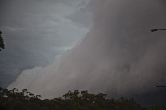 Beast shelf arcus cloud