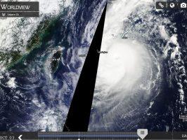 typhooncategory4