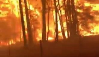 Video of Ferocious and Scary Fires