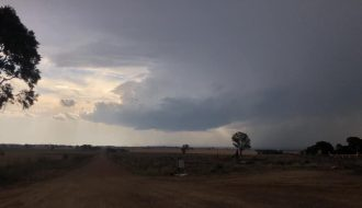 Got sunburnt until this storm approached from the southern periphery of the Coonabarabran storm complex 24th November 2019