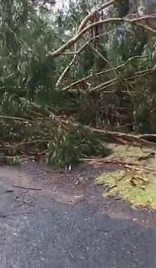 A massive storm just ripped through Mudgee, damaging property and tearing down t...