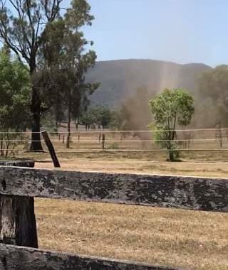 Second video from Muswellbrook today